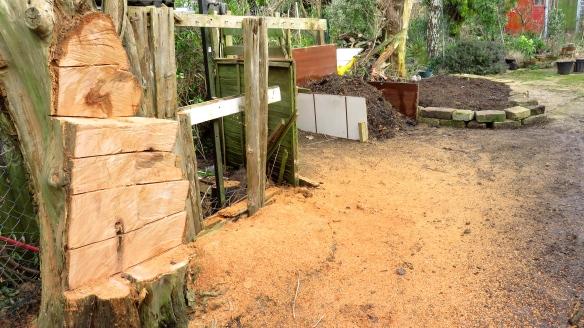 Dead tree sawn