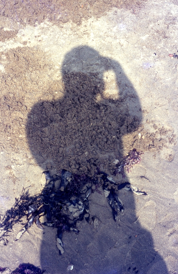 Derrick's shadow 9.68
