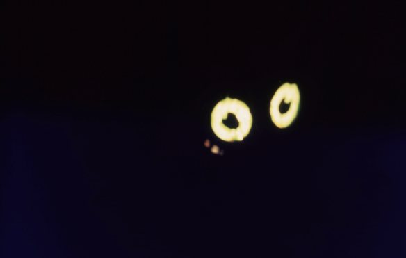 Eyes 9.68