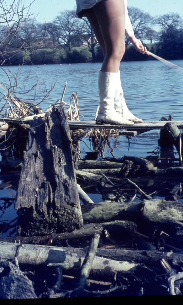 Jackie's legs and driftwood 3.68