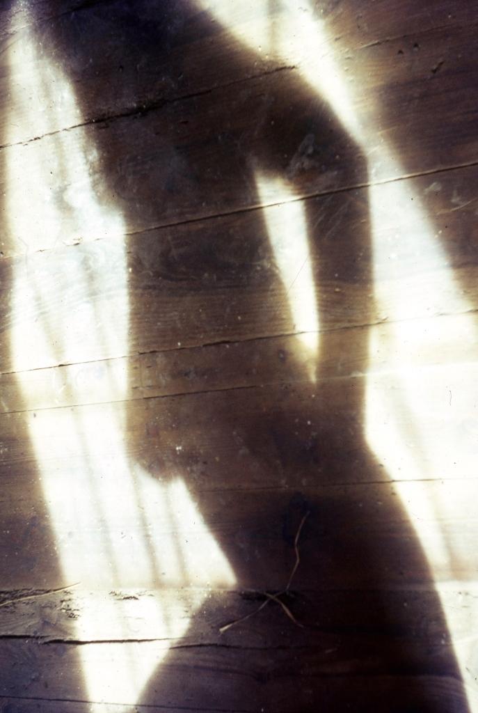 Jackie's shadow 3.68