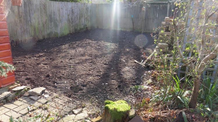Rose garden blnk 2