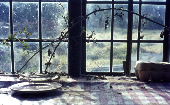 Window of deserted house 3.68