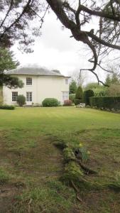 Durmast House garden