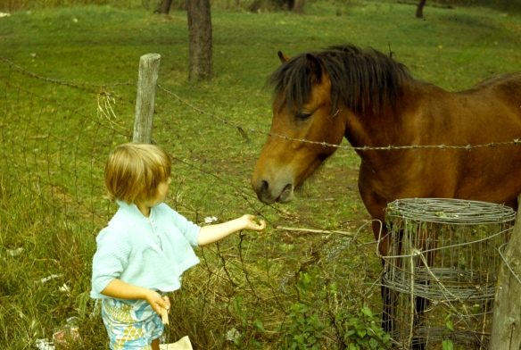 Matthew and horse 8.72