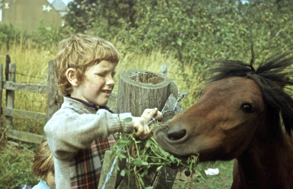 Michael and horse 8.72