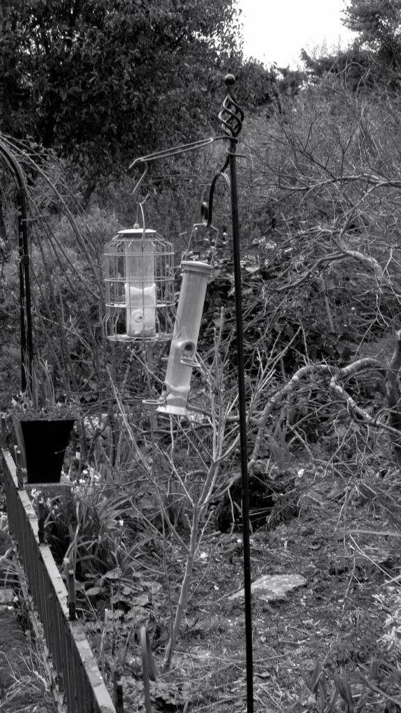 Windblown bird feeders
