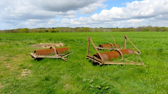 Rusting machinery in field