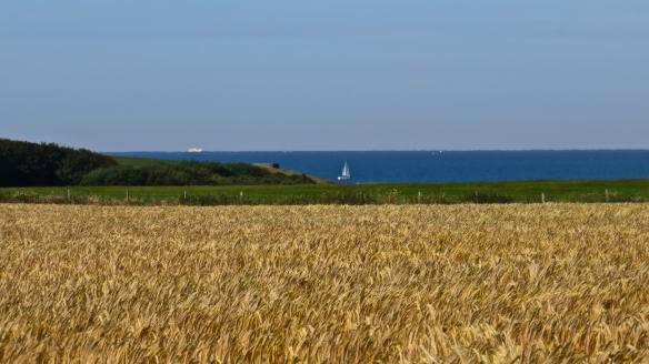 Christchurch bay, yacht, ship, barley