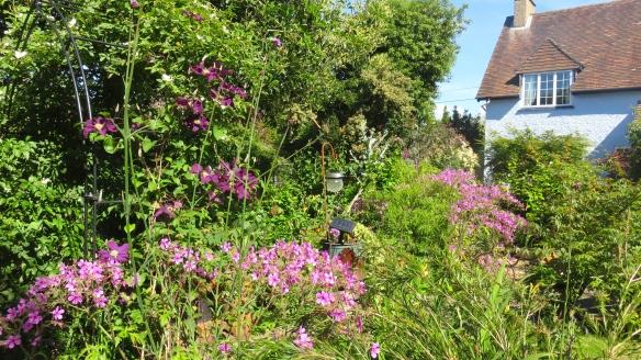 Garden from Phantom path