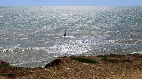 Windsurfer and yacht