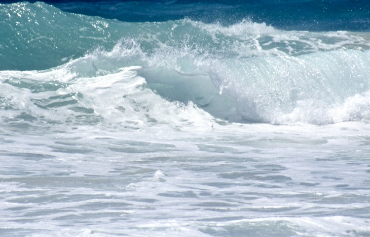 Caribbean Sea 5.04 002
