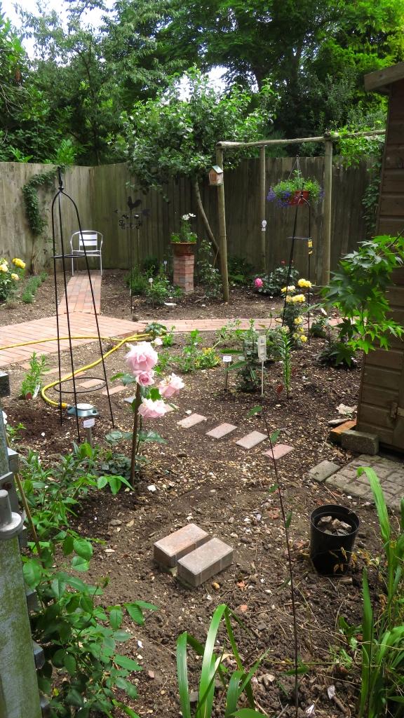 Rose garden work in progress 2