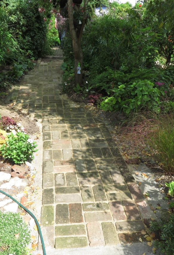 Brick path paving