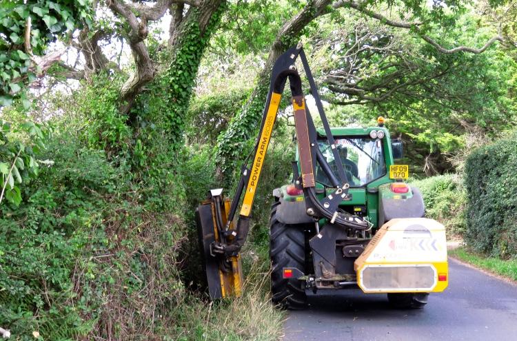 Hedge cutting 1
