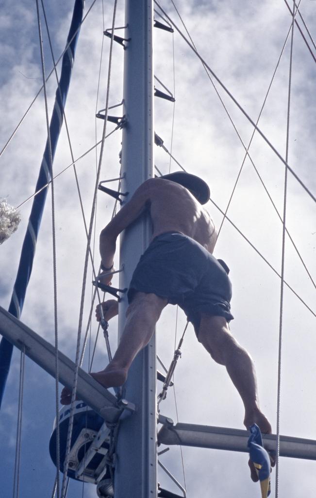 Stein in rigging 2