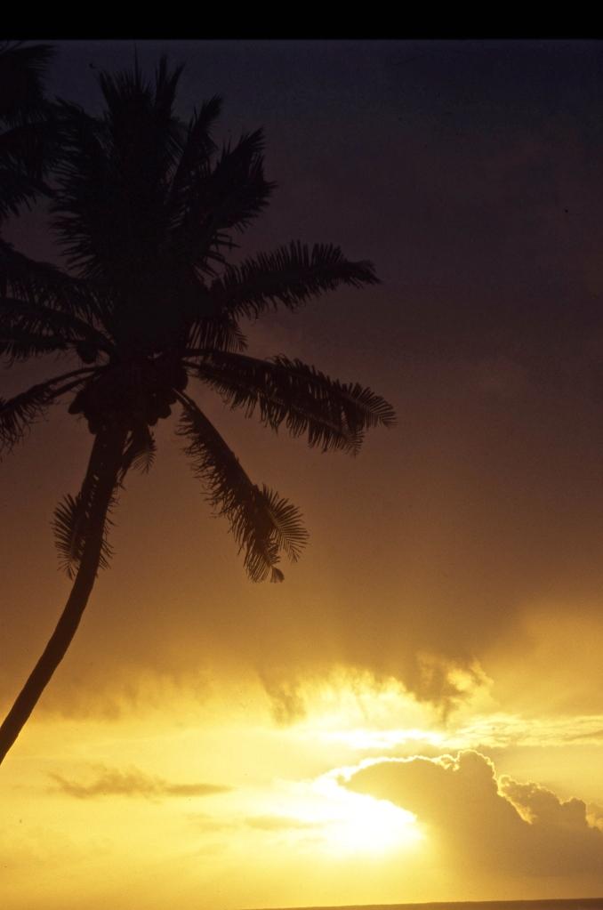 Sunset 5.04 1