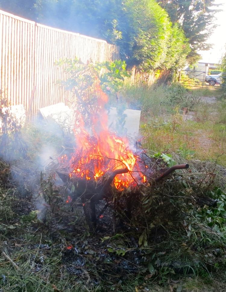 Bonfire in wheelbarrow