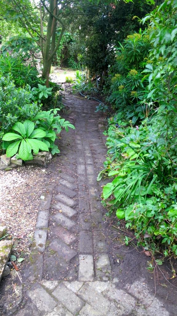Brick path original cleared