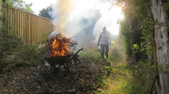 Jackie with bonfires 1