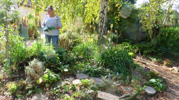 Jackie working on Weeping Birch bed 1