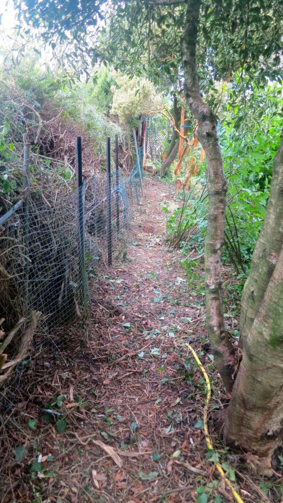 Netting fence