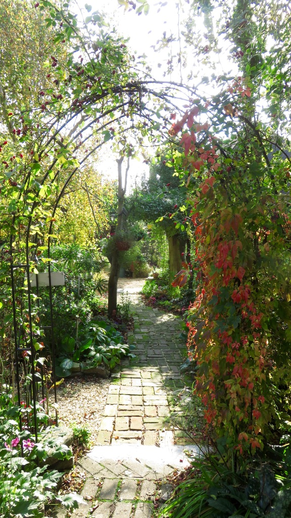 Virginia Creeper and hops on Gothic Arch