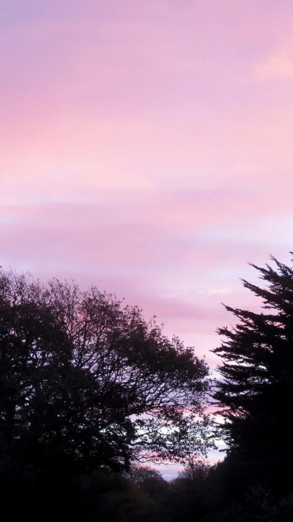 Dawn skies 2