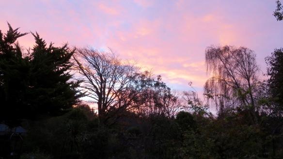 Dawn skies 3