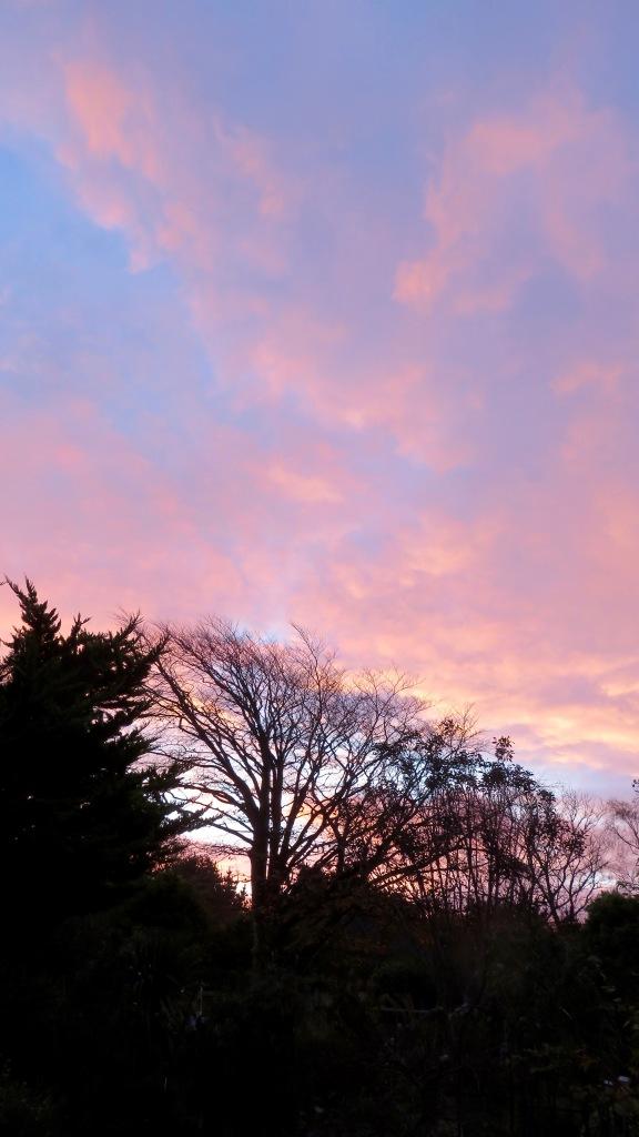 Dawn skies 4