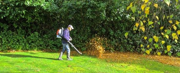 John blowing leaves