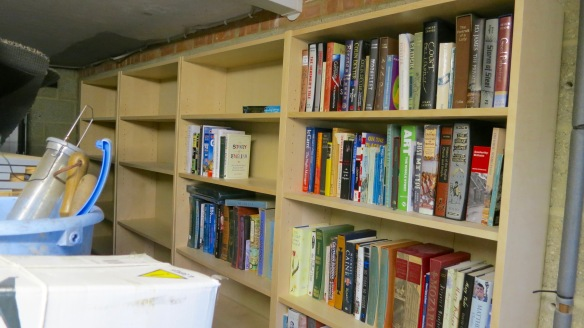 Library in garage