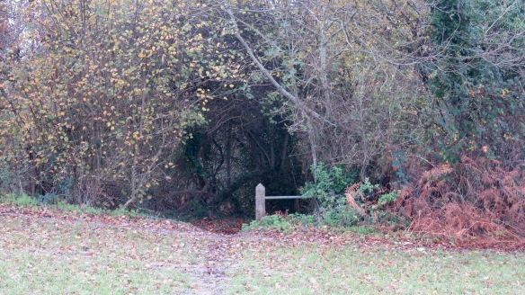 Wood entrance 1