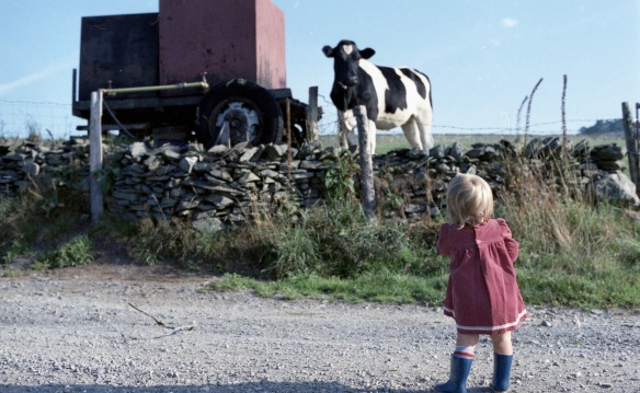 Louisa and cow