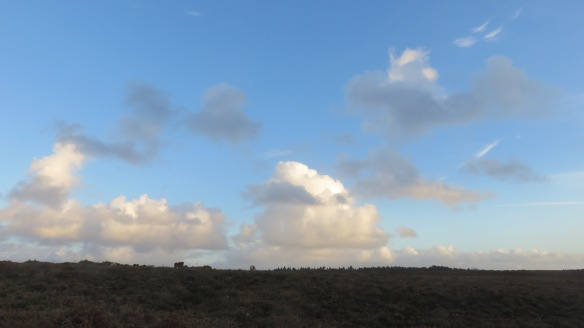 Skyscape with ponies