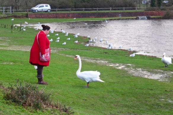 Becky and swan