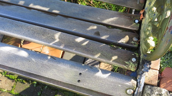 Frost on bench