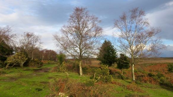Ian in landscape