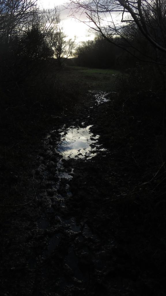 Footpath waterlogged
