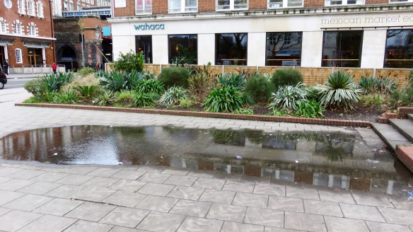 Reflections in paving pool