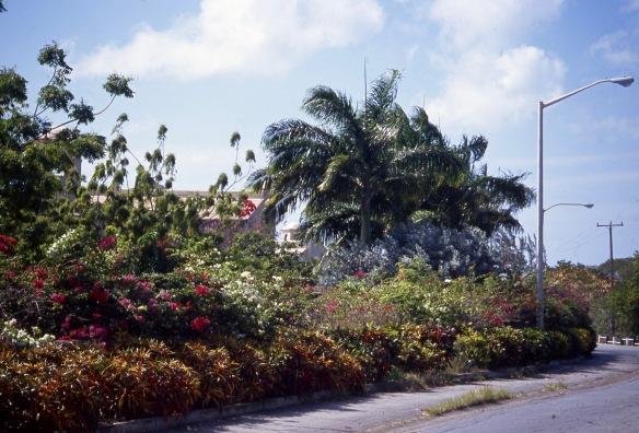 Port St Charles 4