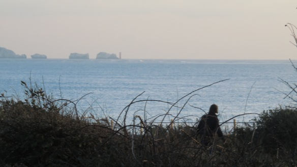 The Needles and lighthouse 2