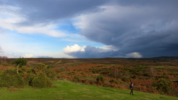 Walker in heathland