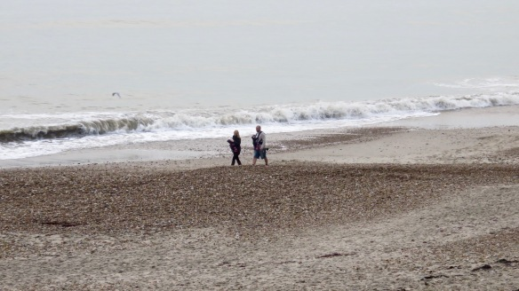 Walkers (Kate, Toby and twins) on beach 2