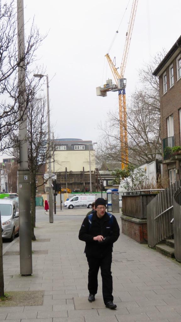 Crane at work 1