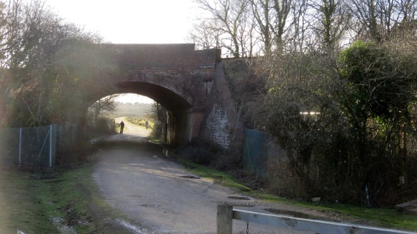Cyclists under bridge