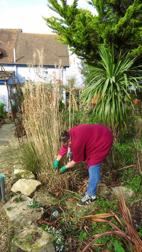 Jackie pruning grass 2