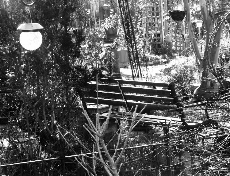 Bench, light, eucalyptus