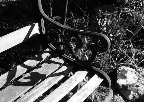 Bench on Heligan Path