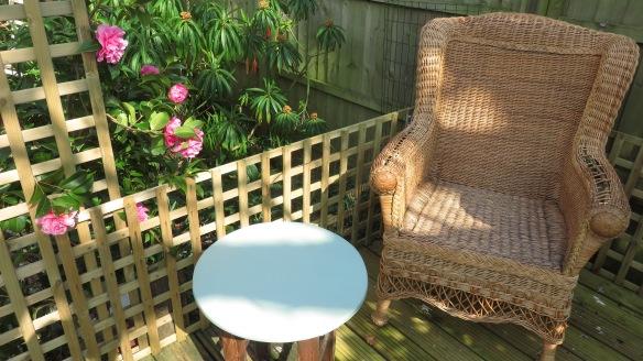 Chair, table, camellia, euphorbia